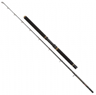 Penn Regiment II XT Rod 20-60lb